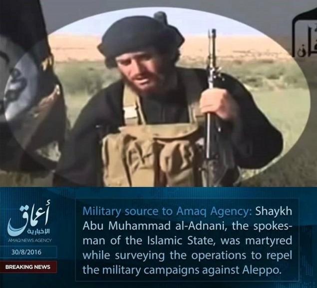 Efek Mubahalah, Jubir ISIS Abu Muhammad Al-Adnani Tewas di Aleppo
