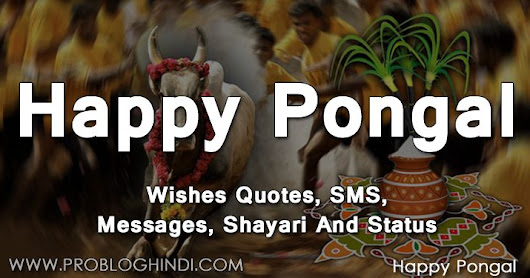 Happy Pongal 2019 Wishes Quotes, SMS, Shayari And Status