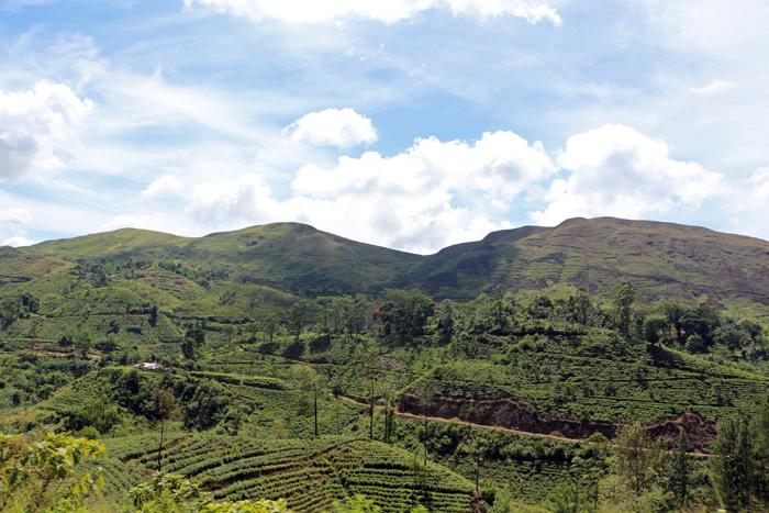 Sri Lanka Hochland