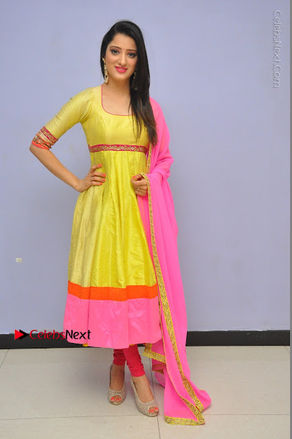 Actress Richa Panai Latest Pos in Yellow Anarkal Dress at Rakshaka Bhatudu Telugu Movie Audio Launch Event  0007.JPG