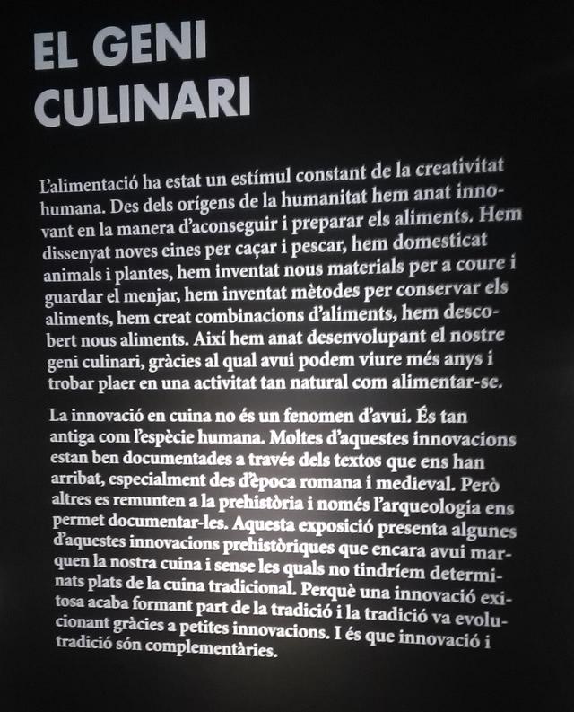 el geni culinari texte intro