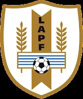 Escudo Selección Alto Paraná de Fútbol