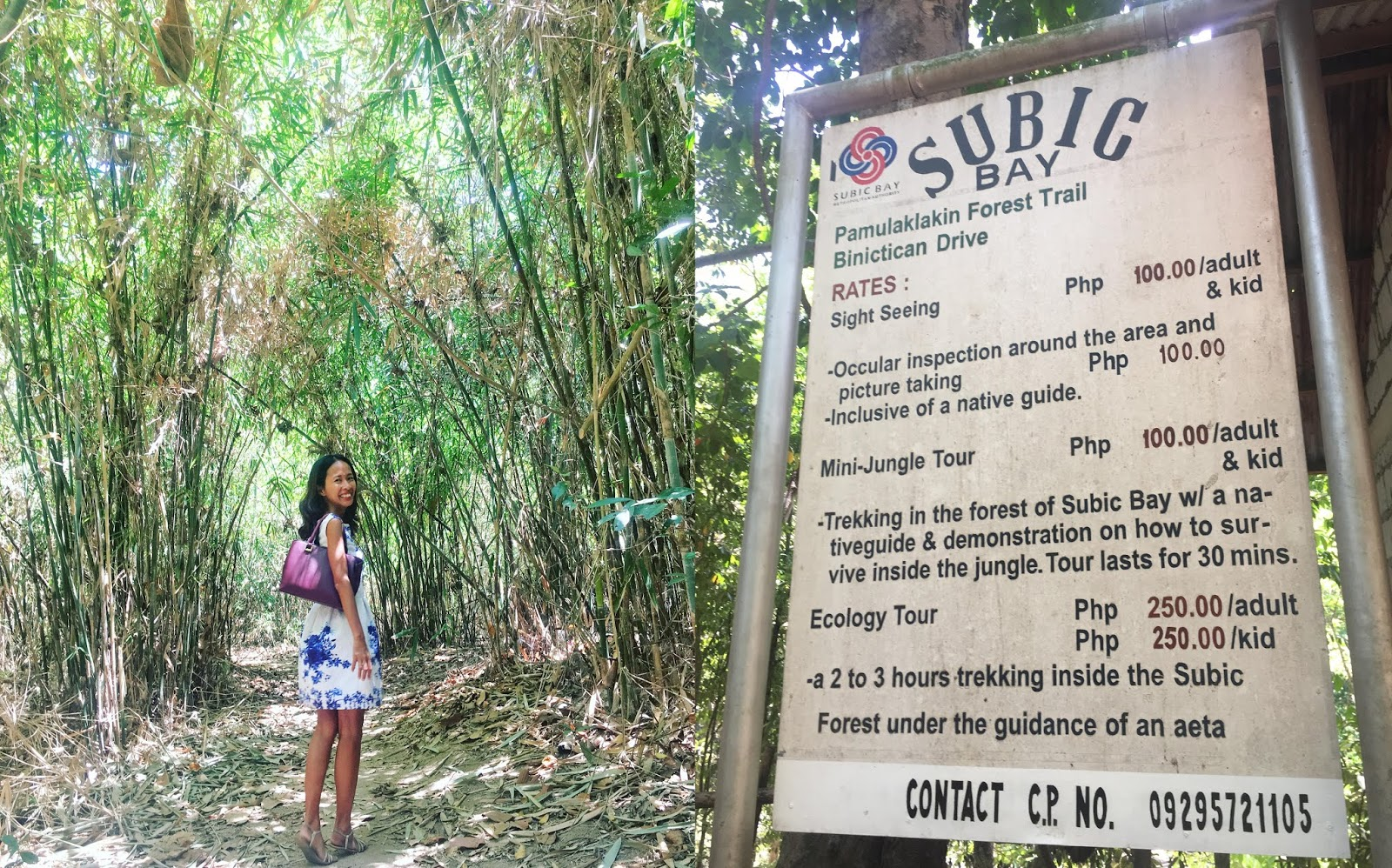 PAMULAKLAKIN FOREST TRAIL SUBIC BAY