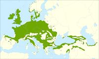 distribucion del quercus petraea