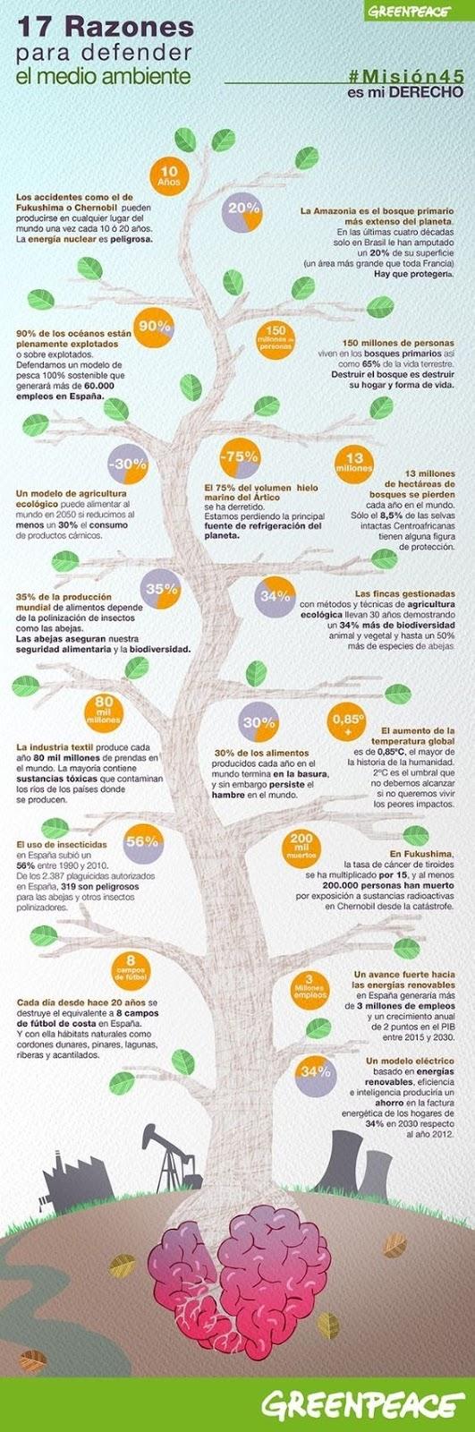 Razones para Cuidar el Medio Ambiente