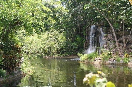 water, island, river, bahamas