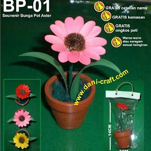 Bunga Kering Pot Aster