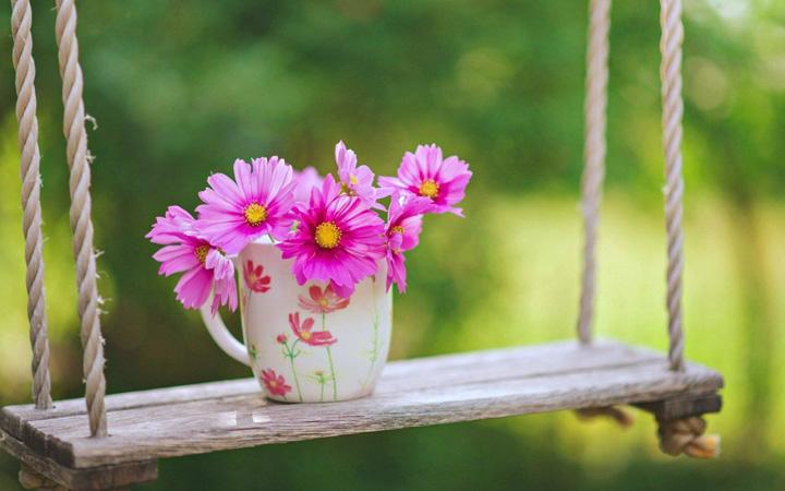 manzaralı çiçek resimleri
