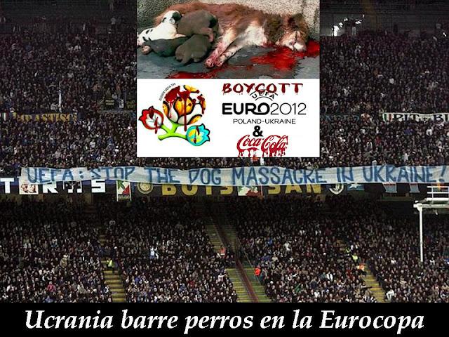 imagina65: LA ZONA ANIMAL : Cuando el fútbol mata