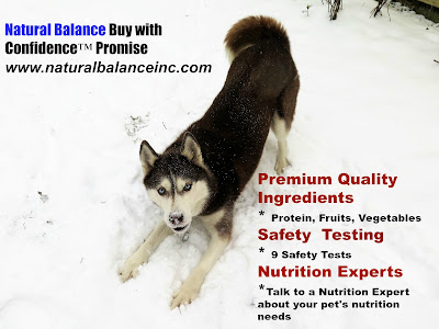 Qualified Pet Nutrition Experts at Natural Balance are available to help you select the right food for your pet