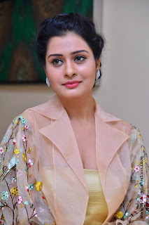 Payal Rajput at RX100 movie audio launch 40