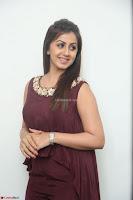 Nikki Galrani in a Brown Shining Sleeveless Gown at Nakshatram music launch ~  Exclusive 040.JPG
