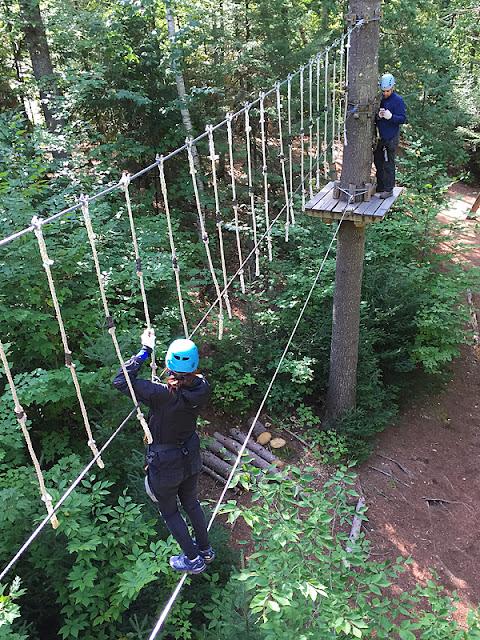 Deux participants tentant de franchir un parcours d'arbre en arbre