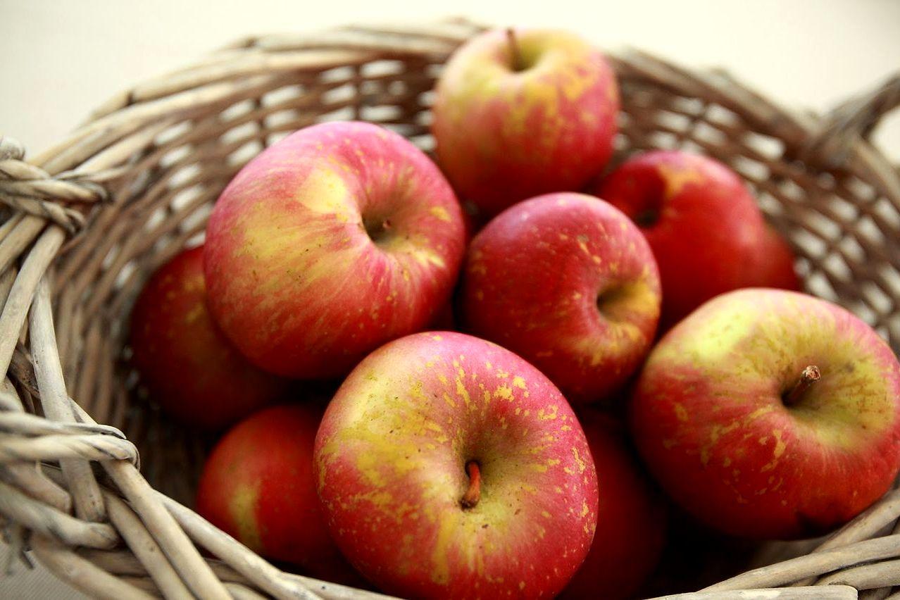 Apel untuk Makanan Diet (detik.com)