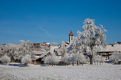 Winter, Winterlandschaft, Schneebedeckte Bäume, Schnee