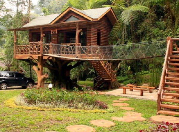 Daftar rumah pohon di Bogor