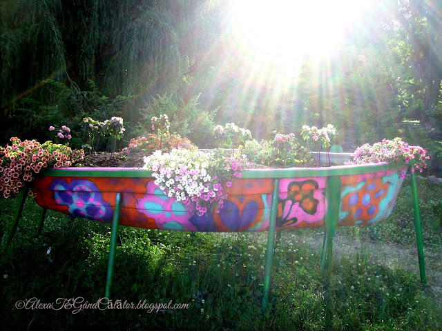 Sunset in june. A floral boat in bright light.