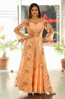 Beautiful Nidhhi Agerwal - Traditional Dress