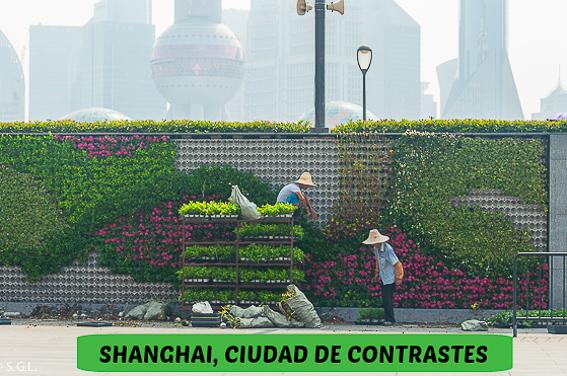 Segundo dia en Shanghai, ciudad de contrastes