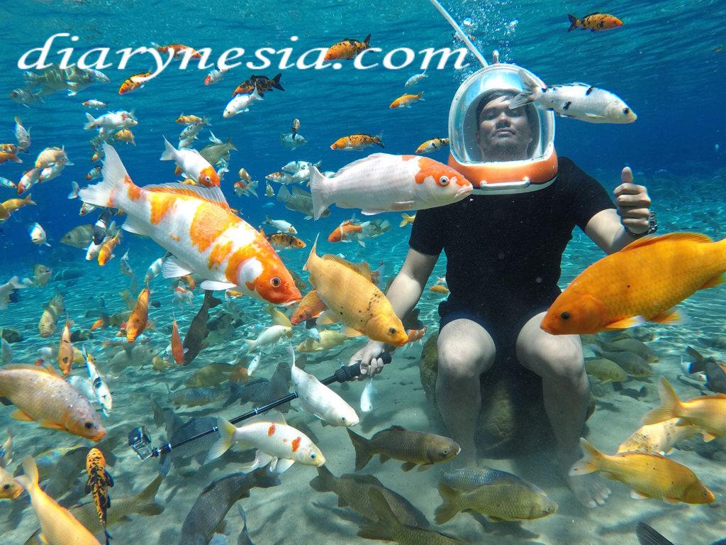 umbul ponggok tourism, best tourist attractions in yogyakarta and klaten, yogyakarta tourism, diarynesia
