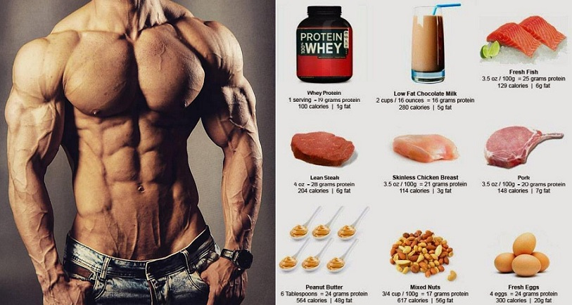 Foods High In Good Fat And Protein