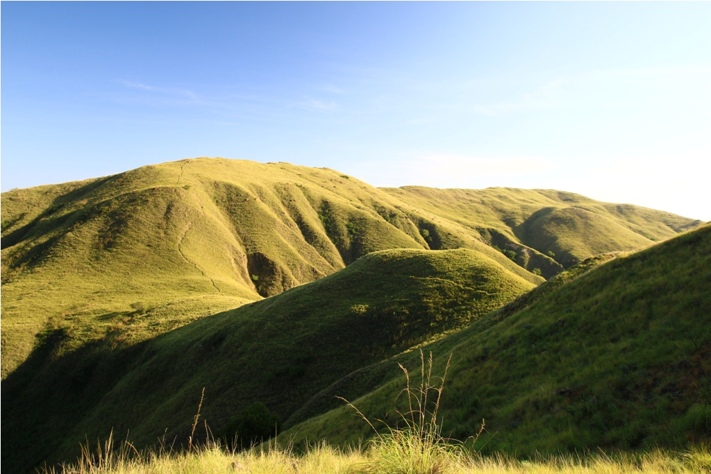Savana jalur trekking Gili Laba