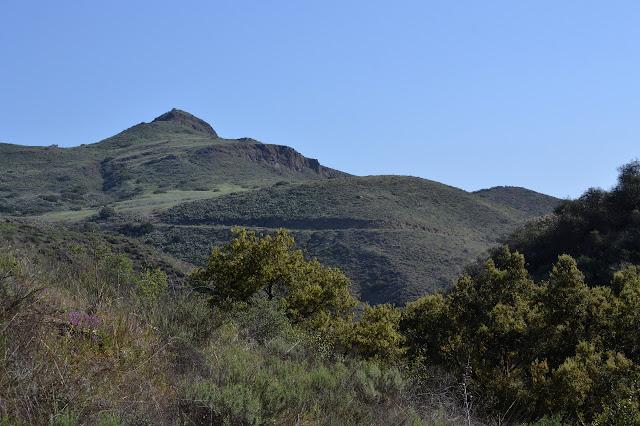 Elliott Peak