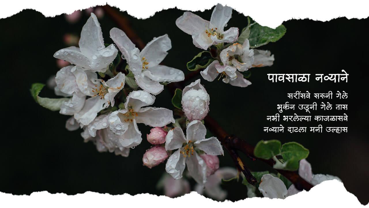 पावसाळा नव्याने - मराठी कविता | Paavsala Navyaane - Marathi Kavita