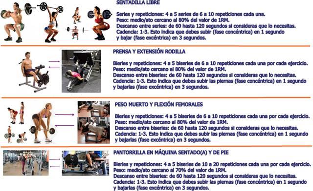 Rutina ejercicios para el día lunes para trabajar los músculos de la cola y piernas