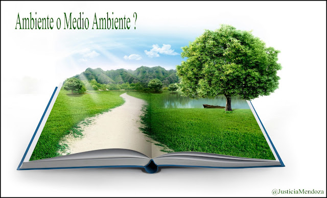 Lingüística: Como se dice ambiente o medio ambiente ??