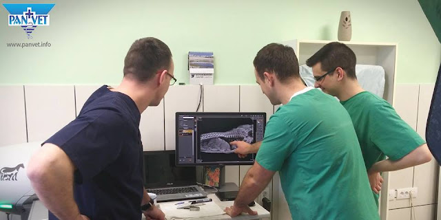 Upotreba digitalnog rendgena u dijagnostici
