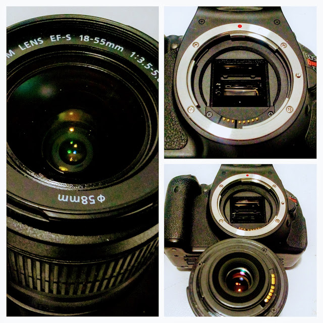 Canon EOS Rebel 3Ti Camera - A three picture collage of the mirror, lens mount and EF-S 18-55 mm lens.