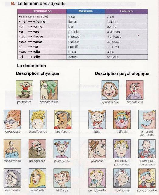PSG #4 czyli Powtórka Słówek i Gramatyki - słownictwo - Francuski przy kawie
