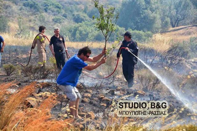 56 αγροτοδασικές πυρκαγιές το τελευταίο 24ωρο