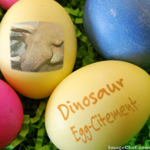 Dinosaur eggs refute bird evolution