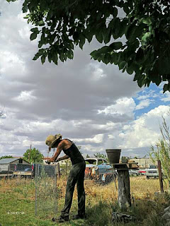 Picture of woman working with chicken wire in New Mexico