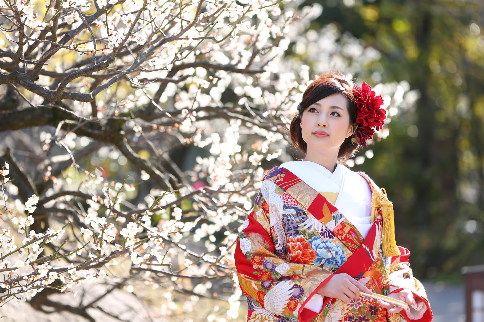 DE Amp Co Decollte Wedding Photography BLOG Introduction Of Japanese Wedding Outfits And
