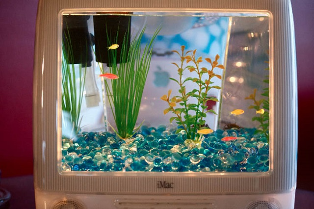 iMacを水槽・アクアリウムにすると美しくなる【i】