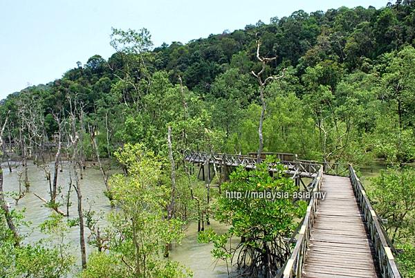 Taman Negara Bako Sarawak