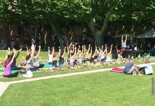 Cours de Yoga au Festival Yoga&Bien-Être Aix
