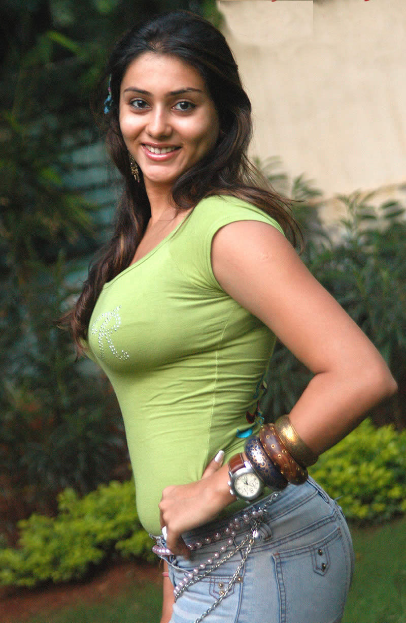 Unseen Namitha Hot Sizzling Wallpapers 2012  521 -4027