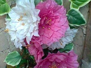 kresek bunga plastik