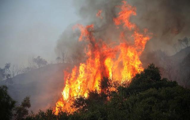 Φλέγεται η Κρήτη! Δεκάδες μέτωπα σε όλο το νησί - Πυρκαγιές και σε Ηλεία, Κιάτο και Αυλώνα