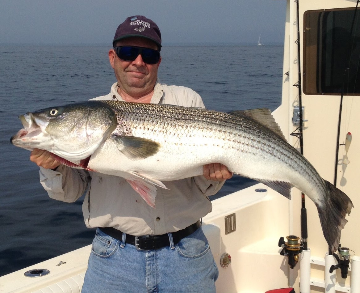 No fluke fishing barao of east providence appointed to for Newport ri fishing charters