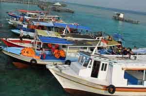 Paket Homestay dan Pulau Liwungan