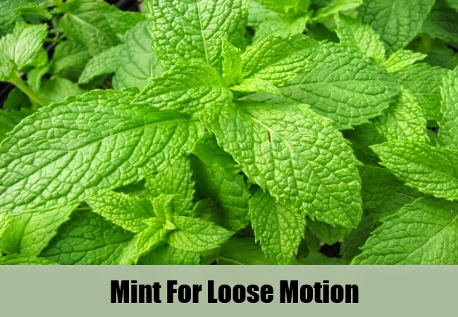 Top 5 Herbal Remedies For Loose Motion Mzizi Mkavu