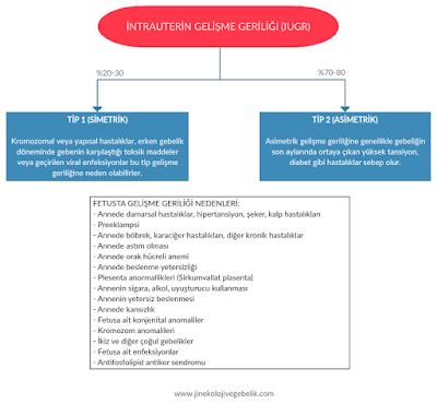 IUGR, , RİGG, intrauterin gelişme geriliği