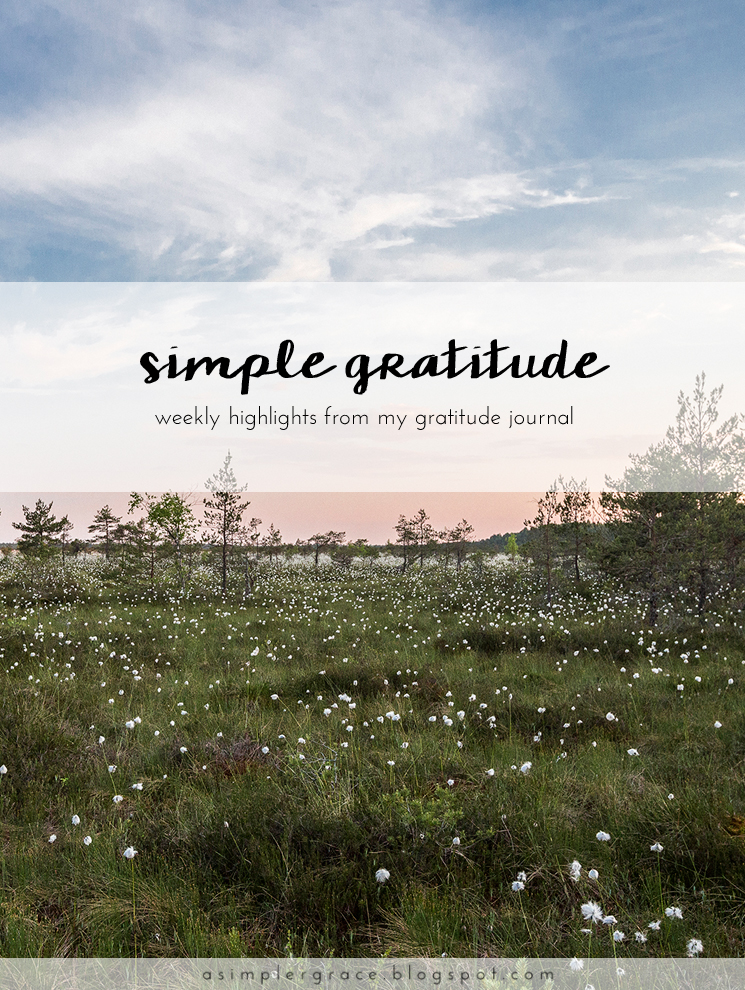 A weekly series focusing on practicing gratitude.  #gratefulheart #gratitude #feelingthankful - Simple Gratitude | 43 - A Simpler Grace