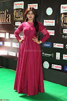 Monal Gajjar in Maroon Gown Stunning Cute Beauty at IIFA Utsavam Awards 2017i 010.JPG