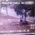 Chinês corta uma árvore para roubar uma bicicleta (veja o video)